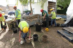 Preparing clay plaster